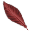 Feather - Items -