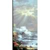 Sun and sky - Nature -