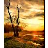 Sun and sky - Natural -