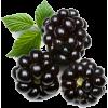 Raspberry - Voće -