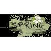 I Love Spring Black - Besedila -