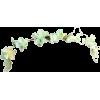 tiara - Uncategorized -
