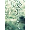 tło - Background -