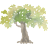 tree - Ilustracje -