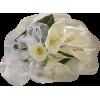 Bouquet - Biljke -