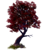 Drvo / Tree - Plants -