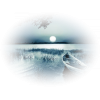 Jezero / Lake - Nature -