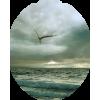 More / Sea - Nature -