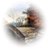 Most / Bridge - Buildings -