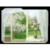 Prozor / Window - Buildings -