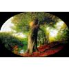 Tree / Drvo - Природа -
