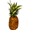 tropical - Lebensmittel -