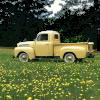 truck - Vegetables -