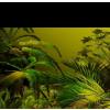 tubes jungle floor - Natura -