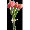 tulips - Objectos -