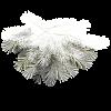 Twig Plants White - Biljke -
