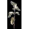 Twig Plants Brown - 植物 -