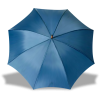 Umbrella - Items -