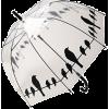 umbrella - Attrezzatura -