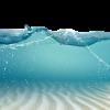 under water - Nature -