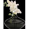 Vase Flowers - Uncategorized -