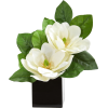vase flower arrangement - Plants -