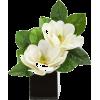 vase flower arrangement - 植物 -