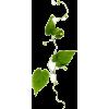 Vine - 自然 -