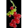 voće - Owoce -