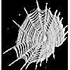 web - Predmeti -