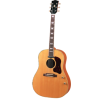 Acoustic Guitar - Items -