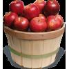 Apple Bushel - Frutta -
