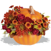 Autumn Pumpkin Flowers - Illustrations -