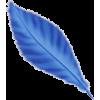 Bird feather Pero - Items -