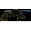 Black Raven In Flight - Plants -