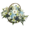Boy Flower Basket - Plants -