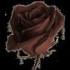Chocolate rose - Ilustracije -
