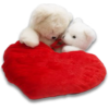 Cuddle Bears in a Heart - Illustrations -