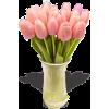 Dusty Pink Tulips - Illustrations -