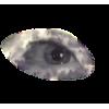 Eye Oko - Persone -