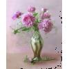 Flowers Cvijeće - Plants -