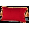 Fringed Pillow - Illustrazioni -