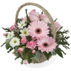 Girl Flower Basket - Plants -
