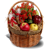 Health Nut  Gift Basket - Plants -