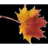 Leaf List - Plants -