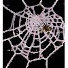 Spider`s Home - Illustrations -