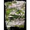 Spring - Nature -