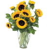 Sunflowers Bunch - イラスト -