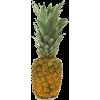 Ananas - Fruit -
