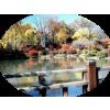 bridge garden river - Buildings -